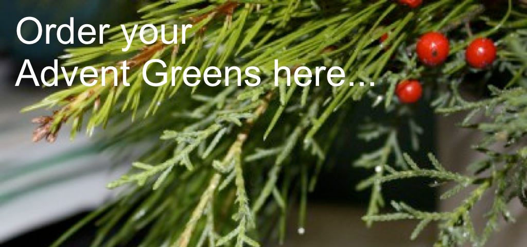 Advent Greens