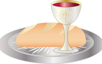 Dec 12 Eucharistic Visitors Training