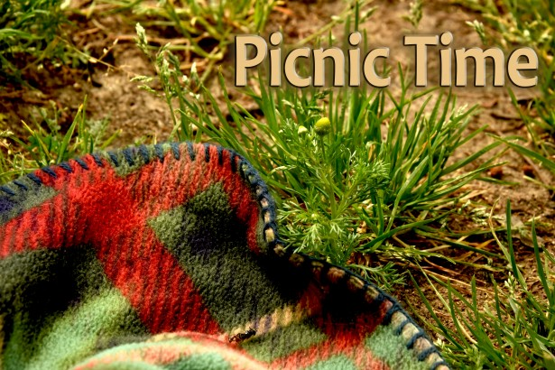Parish Picnic