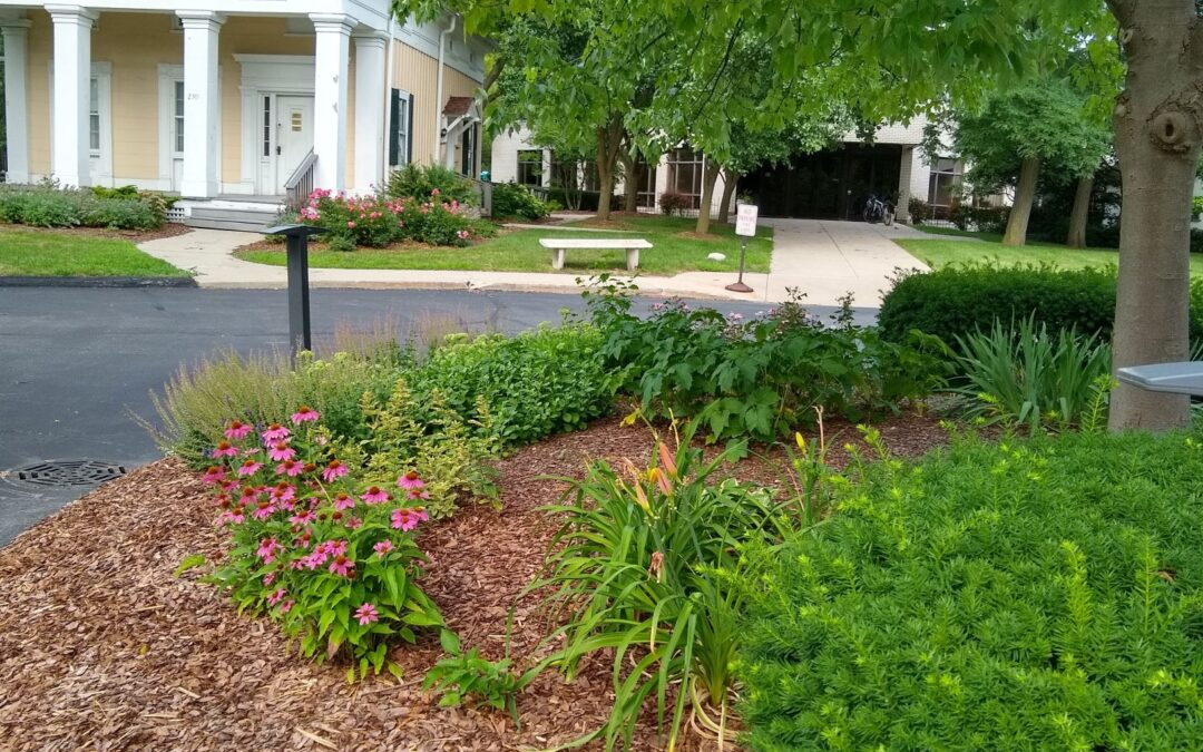 Genesis Grounds Enhancement Day